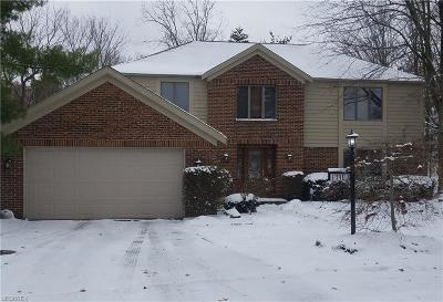 Strongsville Single Family Home For Sale: 17403 Olde Surrey Ct