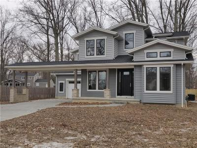 Avon Lake Single Family Home For Sale: 33065 Lake Rd
