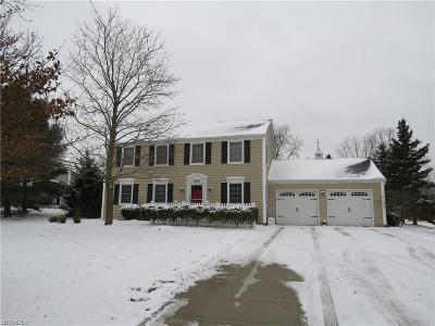 Summit County Single Family Home For Sale: 2308 Glenn Echo Dr