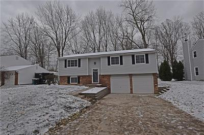 Mentor Single Family Home For Sale: 6805 Palmerston Dr