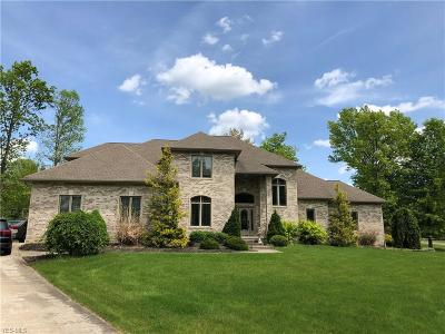 Canfield Single Family Home For Sale: 6170 Deer Spring Run