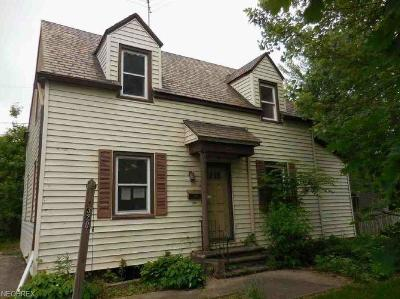 Lorain Single Family Home For Sale: 320 Kansas Ave