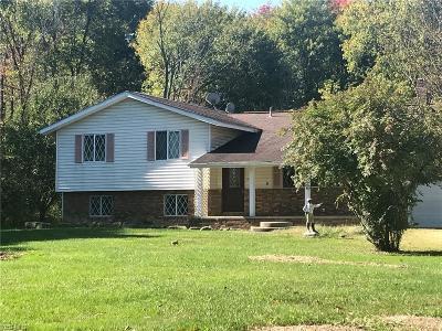 Garrettsville Single Family Home For Sale: 9331 Stanley Rd