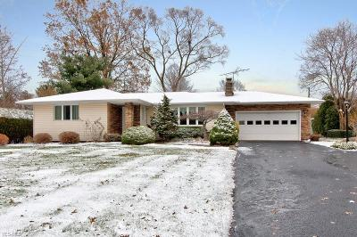 Mentor Single Family Home For Sale: 7429 Button Rd