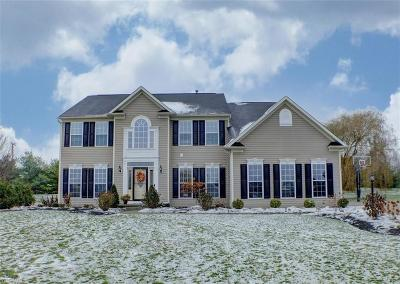 Summit County Single Family Home For Sale: 3368 Symphony St