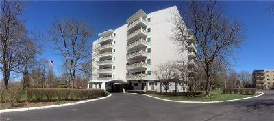 Summit County Condo/Townhouse For Sale: 275 North Portage Path #5H