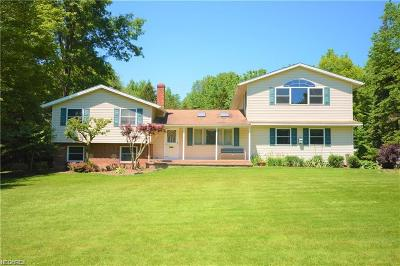 Chagrin Falls Single Family Home For Sale: 8780 Crackel Rd