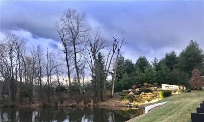 Medina Residential Lots & Land For Sale: 457 Avery Ln
