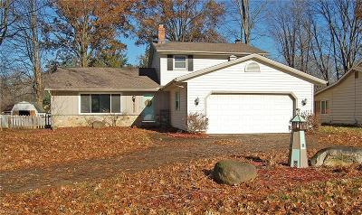 North Ridgeville Single Family Home For Sale: 34102 Gail Dr