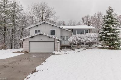 Brecksville Single Family Home For Sale: 2685 Knolls Ln