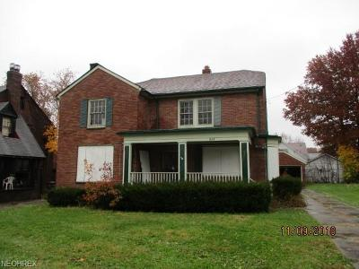 Youngstown Single Family Home For Sale: 464 Mistletoe Ave