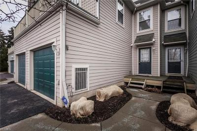 Cleveland Condo/Townhouse For Sale: 4511 West 193rd St