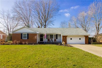 Canfield Single Family Home For Sale: 610 Blueberry Hill Dr