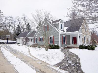 Chagrin Falls Single Family Home For Sale: 10 Solether Ln