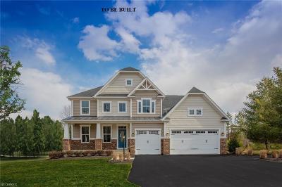 Medina Single Family Home For Sale: 44 Crimson Harvest Ln