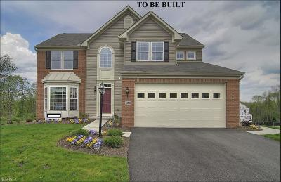 Medina Single Family Home For Sale: 40 Amber Glen Drive Ln