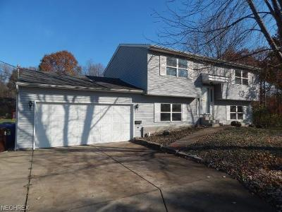 Newton Falls Single Family Home For Sale: 25 East Franklin St