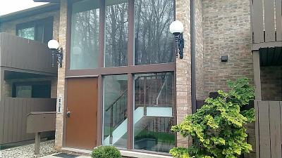 Brecksville Condo/Townhouse For Sale: 6850 Carriage Hill Dr #D53