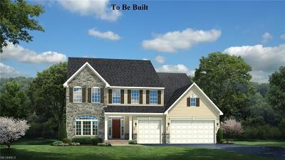 Single Family Home For Sale: 70 Amber Glen Dr