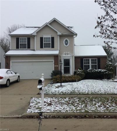 Medina County Single Family Home For Sale: 1180 Ledgestone Dr