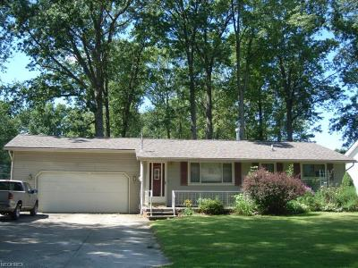 North Ridgeville Single Family Home For Sale: 5300 Cornell Blvd