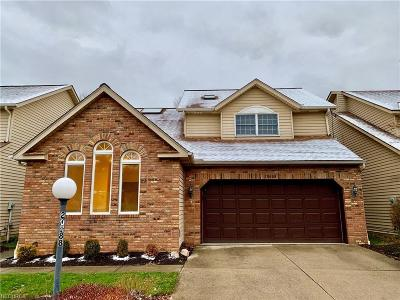 Strongsville Single Family Home For Sale: 20688 Lunn Rd