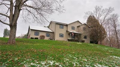 Muskingum County Single Family Home For Sale: 2979 National Rd