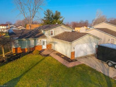 Lorain County Single Family Home For Sale: 354 Naples Dr