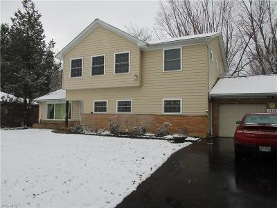 Brecksville Single Family Home For Sale: 7938 Brecksville Rd