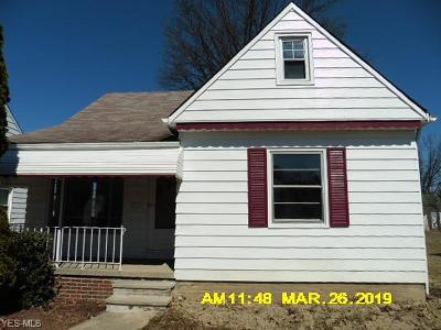Maple Heights Single Family Home For Sale: 14311 Krems Ave