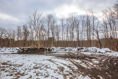 Geauga County Residential Lots & Land For Sale: V/L Mayfield Rd