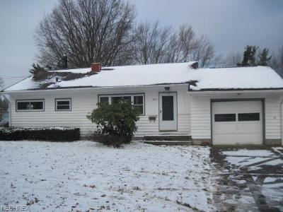 Youngstown Single Family Home For Sale: 3502 Kirk Rd