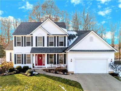 Summit County Single Family Home For Sale: 2861 Crows Nest Cir