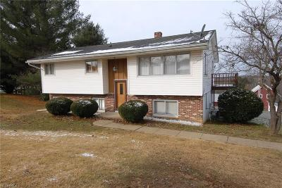 Zanesville Single Family Home For Sale: 1255 Lectric Ln