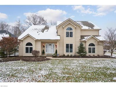 Brecksville Single Family Home For Sale: 6954 Crystal Creek Dr