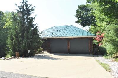 Ashtabula County Single Family Home For Sale: 3211 West Lake Rd