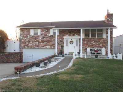 Belpre Single Family Home For Sale: 113 Clement Ave