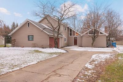 North Ridgeville Single Family Home For Sale: 6732 Miller Dr