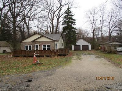 Painesville OH Single Family Home For Sale: $39,900