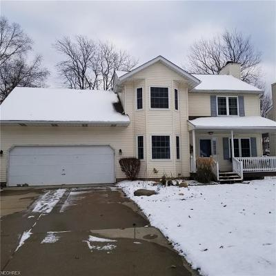 Painesville OH Single Family Home For Sale: $199,900