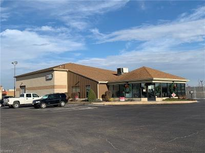 Stark County Commercial For Sale: 4720 Everhard Rd Northwest