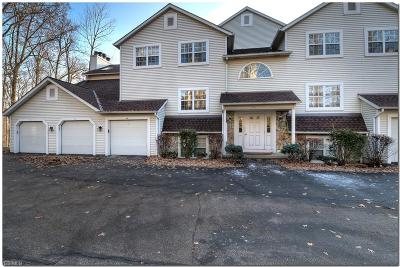Elyria Condo/Townhouse For Sale: 1193 West River Rd North #A2