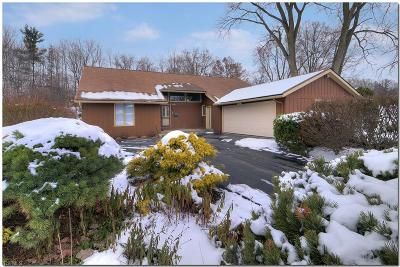 Beachwood Single Family Home For Sale: 24151 Letchworth Rd