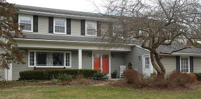 Geauga County Single Family Home For Sale: 17415 Long Meadow Trl
