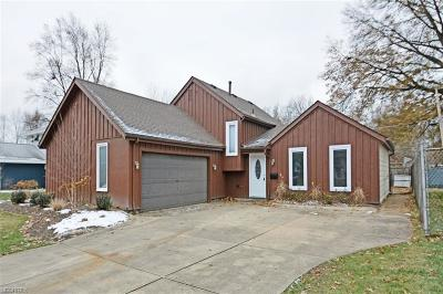 Elyria Single Family Home For Sale: 110 Wilshire Ct