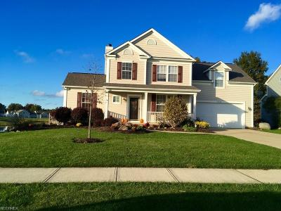 North Ridgeville Single Family Home For Sale: 37684 Terrell Dr