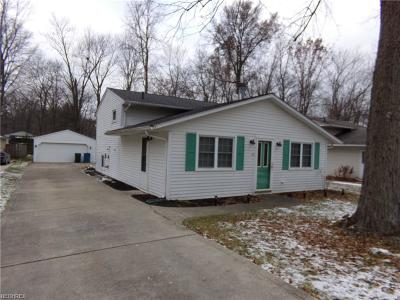 North Ridgeville Single Family Home For Sale: 4962 Main Ave