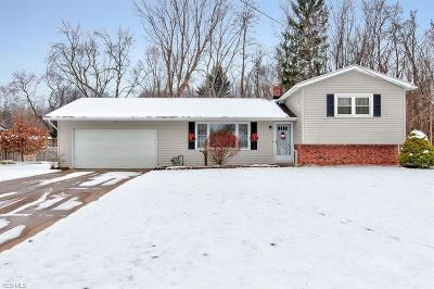 Painesville OH Single Family Home For Sale: $159,900