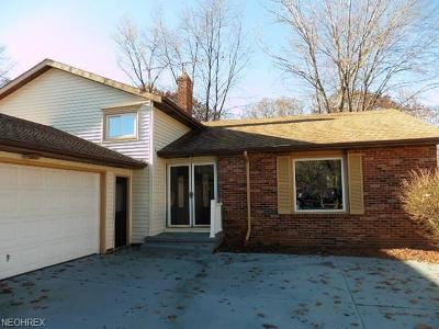 Euclid Single Family Home For Sale: 2110 Apple Dr