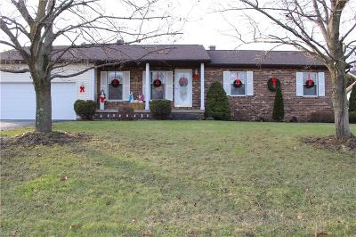 Youngstown Single Family Home For Sale: 7574 Huntington Dr
